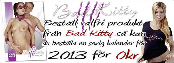 Bad Kitty Kalender