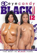 Black Fuckers Vol 12