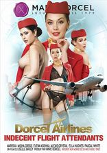 Rollspel Indecent Flight Attendants