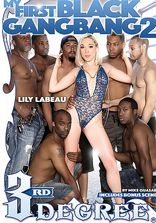 3rd Degree My First Black Gangbang Vol 2