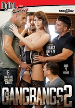 The Gangbangs Vol 2 - 2 Disc